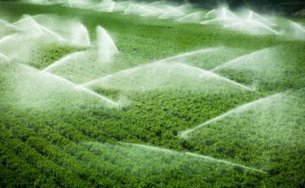 Irrigação e Agronegócios